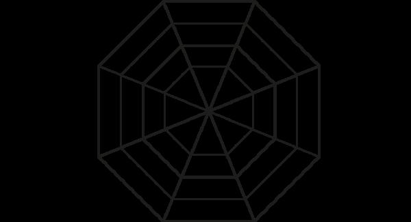 Spinnenweb 2