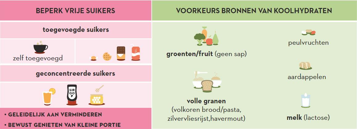 Koolhydraten En Voedingsvezels